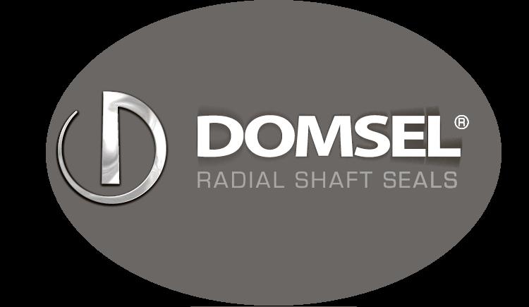 DOMSEL AG Retina Logo